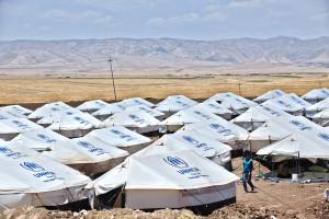 UNHCR June 2014 (1)